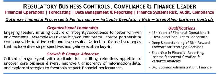 Finance Leader Profile